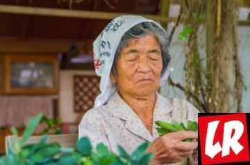 фишки дня, долгожители Японии, Окинава