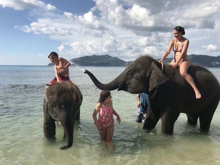 фишки дня - 22 сентября, Международный день слонов