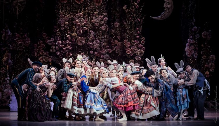 за двумя зайцами, опера в декабре 2018