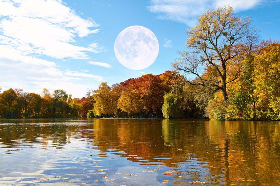 Магнитные бури и лунный календарь на неделю — с 13 по 19 декабря