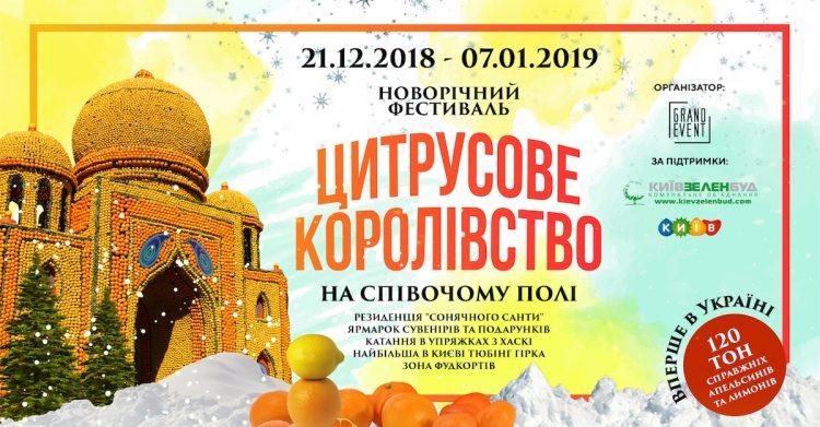 Новый год в Киеве, цитрусовый фестиваль, афиша