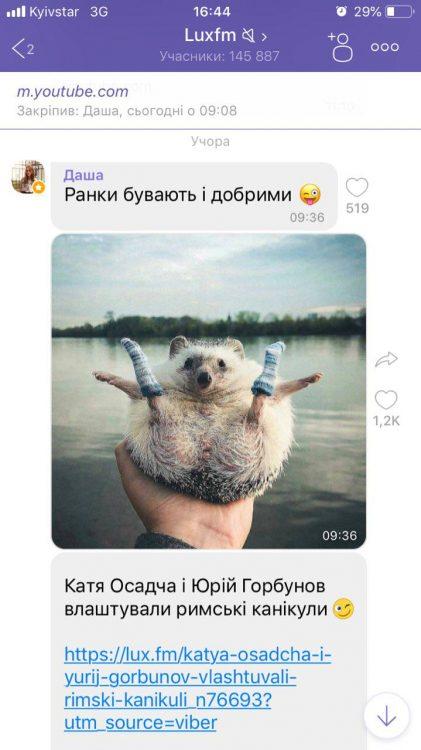 ежик, Viber в Украине – ТОП-10 самых популярных сообществ