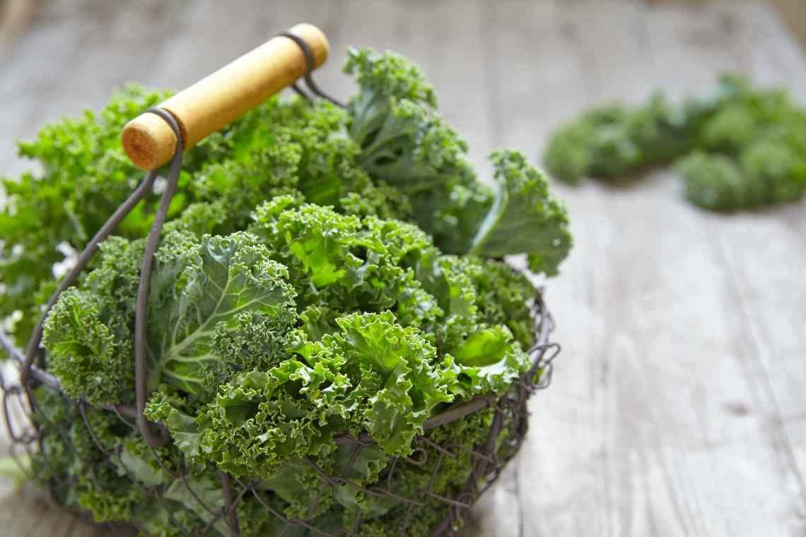 Капуста кале — все о суперфуде и полезные рецепты от диетолога