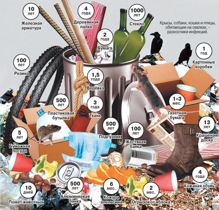 Zero waste, жизнь без отходов, мусора, инфографика