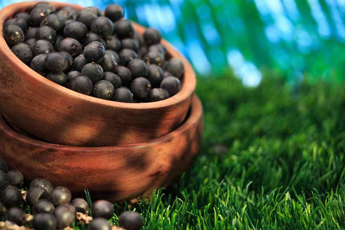 Ягоды асаи – суперфуд для молодости или блеф