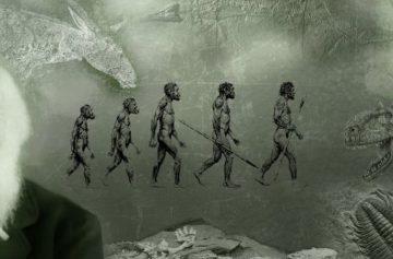фишки дня, день Дарвина, дарвинизм