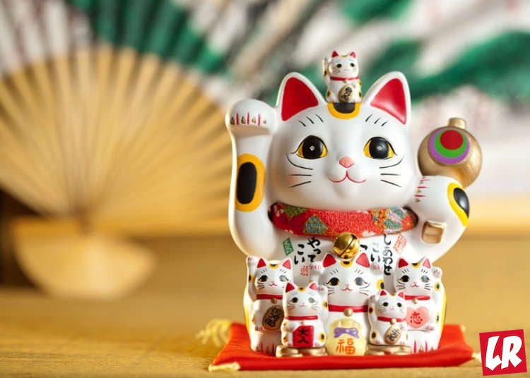 фишки дня - 22 февраля, день кошки Япония