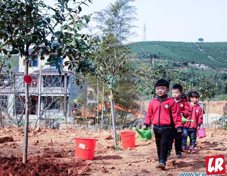 фишки дня - 12 марта, день посадки деревьев Китай