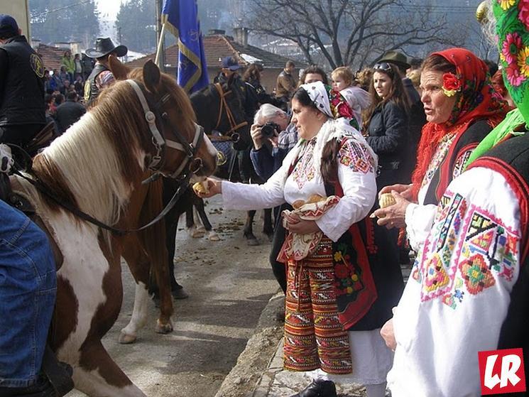 фишки дня - 16 марта, Тудорица Болгария