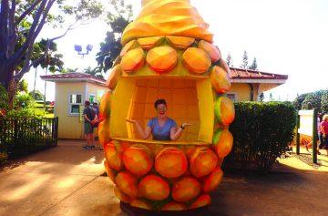 фишки дня, день ананаса