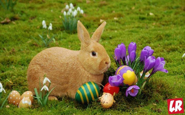 фишки дня - 28 апреля, Пасха, пасхальный кролик