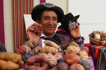 фишки дня, день картофеля Перу