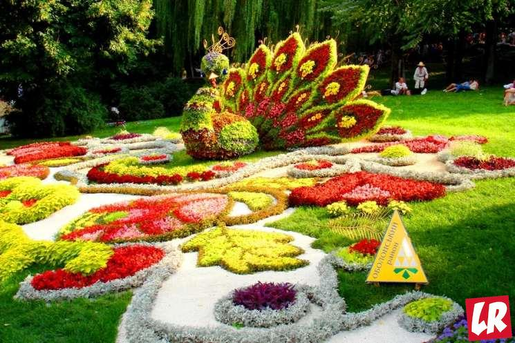 фишки дня - 10 мая, праздник цветов Азербайджан