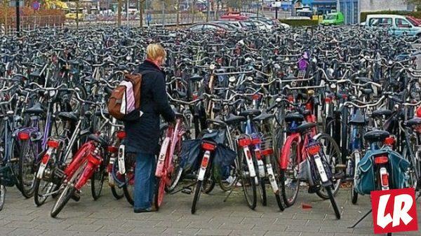 фишки дня - 11 мая, день велосипедов Нидерланды