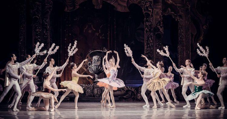 Национальная опера в июле, Спящая красавица