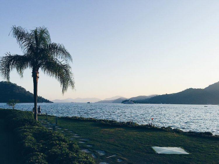 ПМЖ в Турции, пальма, море