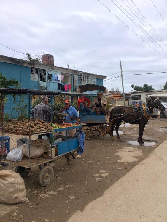 Куба, репортаж, остров несвободы, торговля