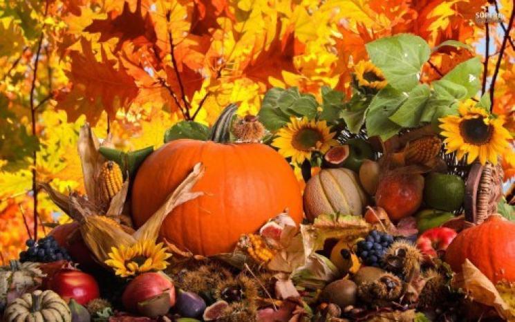 фишки дня - 23 сентября, день осеннего равноденствия