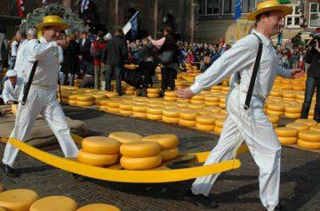 фишки дня, фестиваль сыра Бра