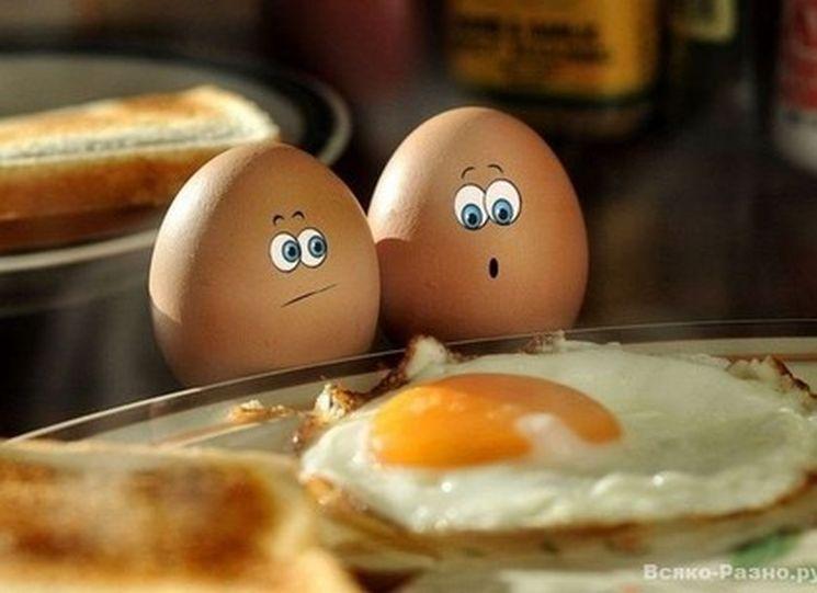 фишки дня - 11 октября, всемирный день яйца