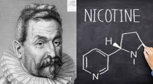 Жан Нико, история табака, ученый