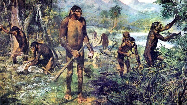 Древнейшая история Украины, 1 500 000 лет назад, Homo erectus